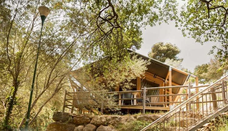 safari_lodge_cala_gogo_terrassencamping.jpg