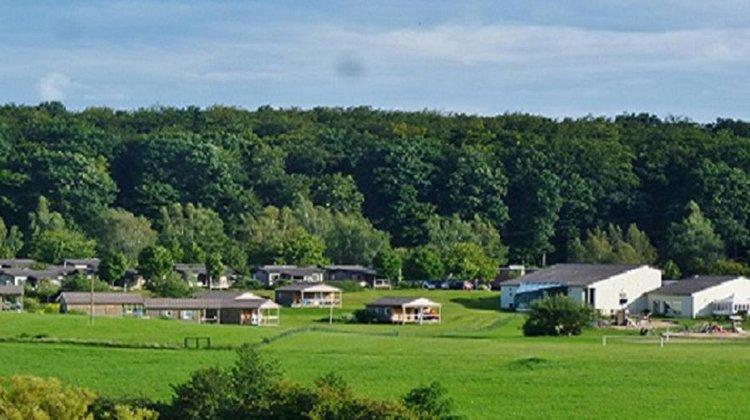 camping oasis overzicht.jpg
